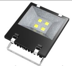 LED COB Floodlight, COB Flood Light, Outdoor Lighting pictures & photos