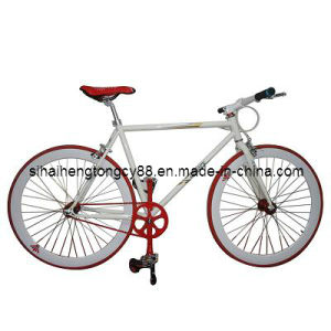 Racing Bicycle with Good Quality (RC-002) pictures & photos