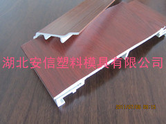 PVC Board Plastic Extrusion Mould (ANXIN_008)