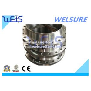 Forged Flange Welding Neck Stainless Steel F304 Pipe Flange