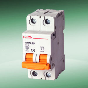Gym2 Mini Circuit Breaker (C60N type 2P)