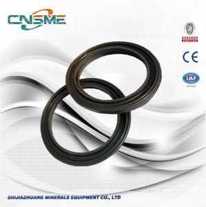 Crusher Parts OEM Head Wiper Ring pictures & photos
