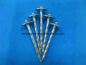 Screw/Twisted Shank Roofing Screw (Roofing Nail) pictures & photos