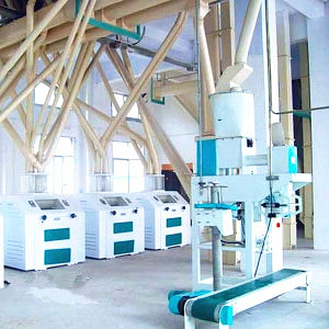Flour Mill Machine (6FTS-78 for wheat/maize/corn) pictures & photos