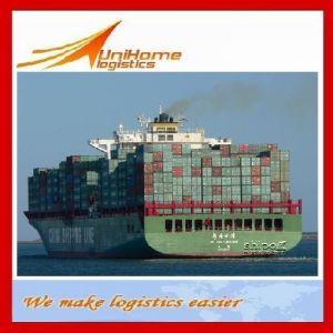 Competitive Sea Freight/Shipping Service From Foshan, Guangzhou, Shenzhen, Ningbo, Shanghai, Xiamen, Qingdao, Tianjin China to Beire/Mozambique