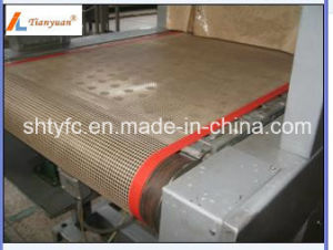 Teflon Mesh Belt for High Temperature (TYC-32301) pictures & photos