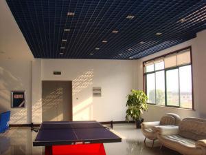 Aluminum Ceiling 01