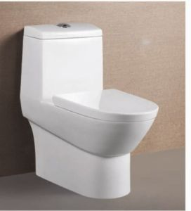 Ceramic One Piece Washdown Toilet for Bathroom (ON-838)
