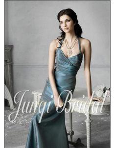 Fancy Party Dress/Evening Dress(Pa1012)