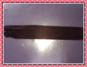 """Top Quality Human Hair Extension Remy Human Hair Silky 20"""" 4# (HHR-204) pictures & photos"""