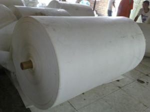 Polyester Waterproof Mat (120G/M2--250G/M2)