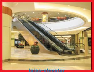 Escalator with Auto-Start and Vvvf Control Type Functions pictures & photos