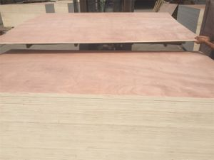 Cheap Price Commercial Face Plywood pictures & photos