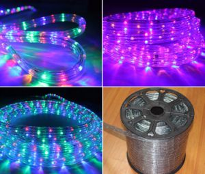 Colorful 30LEDs 2W/M LED Rope Light/Outdoor Light/LED Strip Light/Neon Light/Christmas Light/Holiday Light/Hotel Light/Bar Light Round Two Wires LED Strip pictures & photos