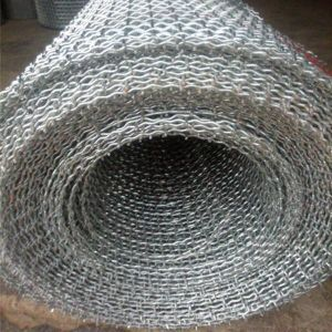 with High Quality Galvanized Crimped Wire Mesh China Anping Factory pictures & photos