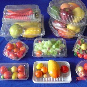 Plastic Fruit Container Forming Machine pictures & photos