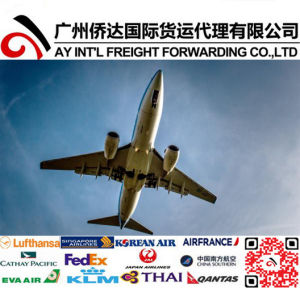 Airfreight Service to St. Petersburg