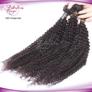 Fbl Unprocessed Hair Virgin Brazilian Kinky Curly Hair pictures & photos