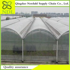 High Quality Double-Aerated Plastic Film Greenhouse pictures & photos