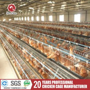 3 Tiers Layer Chicken Cage for Poultry pictures & photos