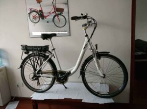 Electric Bike Bicycle with Aluminum Alloy Frame High Quality pictures & photos
