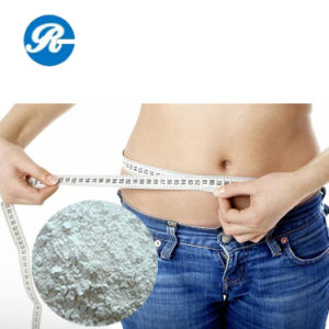 Food Additives GMP Lose Weight L-Carnitine pictures & photos