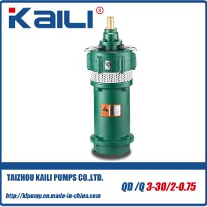 QD&Q Multistage Electric Submersible Water Pumps(with 2 impellers) pictures & photos