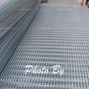 304 Stainless Steel Welded Wire Mesh Panel pictures & photos