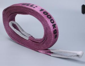 En1492-1 7: 1 Polyester Nylon Flat Webbing Lifting Sling pictures & photos