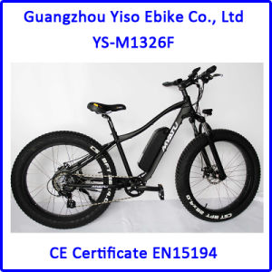 Man E Bike with Brushless Rear Motor pictures & photos