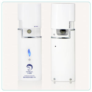 Hand Held Facial Nano Electric Steamer Spray Beauty Device pictures & photos