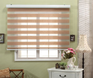 Fashionable Zebra Blinds Roller Shade Day and Night Fabric Window Blinds pictures & photos