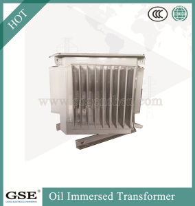 Oil Immersed Saving Energy Transformer/Power Transformer with ISO, TUV and Ce Standard pictures & photos