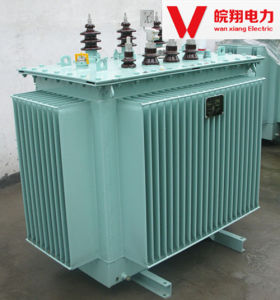 Oil-Immersed Transformer/Power Supply/ High Voltage Transformer pictures & photos