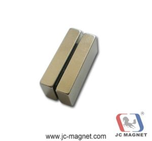 Custom Shape Super Strong Neodymium Magnets pictures & photos