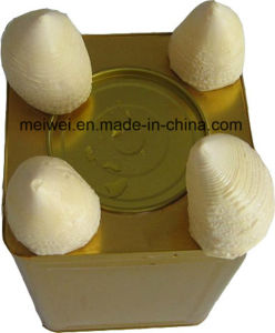 18kg Canned Bamboo Shoots Natural Taste pictures & photos