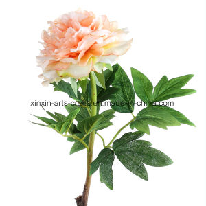 Real Touch Fake Peony Artificial Flowers with 3sets of Leaves&Lifelike Stem pictures & photos
