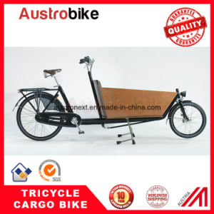 Cargo Bike Cargo Tricycle Electric Cargo Bike Pizza Delivery Ebike pictures & photos
