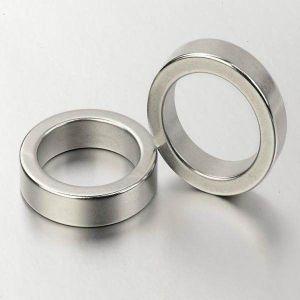 Big Radial Neodymium Magnetic Ring Magnet pictures & photos