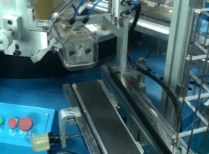 Automatic Hot Stamping and Heat Transfer Machines pictures & photos