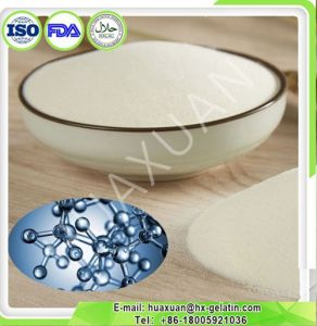 Collagen Powder Industrial Grade for Amino Acid Extraction pictures & photos