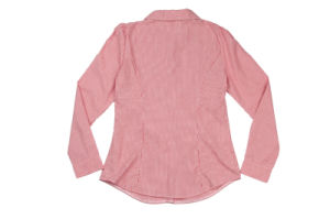 Two Color of Ladies Blouse pictures & photos