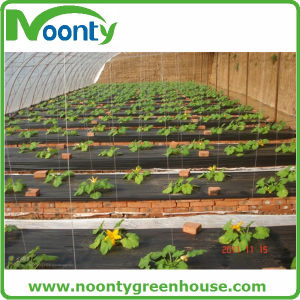 Black Ground Covering Plastic Weed Matting pictures & photos