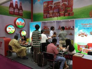56g Standing Sachet Tomato Paste 70g Tomato Pouch Tomato Paste pictures & photos