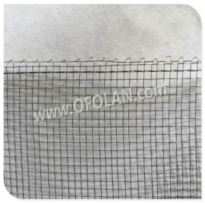 Edging (Wrapping) Nickel 200 Wire Mesh Screen pictures & photos