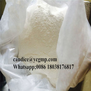 Nandrolone Cypionate for Muscle Building Nandrolone Cyp Bulking Cutting Cycle  pictures & photos