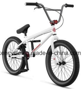 20 Inch Hi-Ten Frame BMX Bike/ Bicicleta/ Dirt Jump BMX/ Sy-Fs2097 pictures & photos