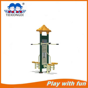 Adult Stepper Outdoor Fitness Equipment pictures & photos