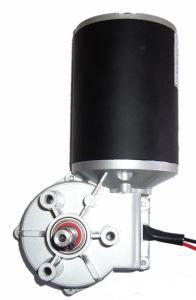 DC Worm Gear Motor for Intelligent Door Control pictures & photos