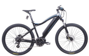 Electric Mountain Bike with 250W MID-Motor